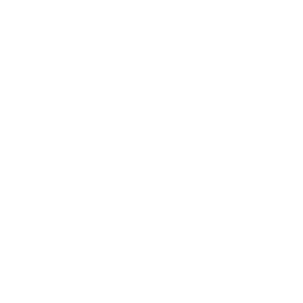 Foliopussi Chantilly valkoinen